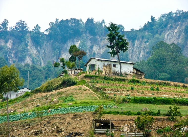 Farm With Terraces