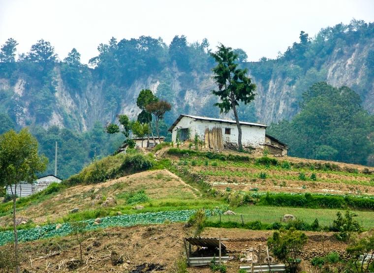Farm With Terraces